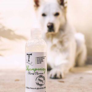 Shampooing à l'Aloé vera et à la glycérine végétale Bio